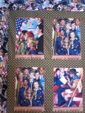Name:  Close-up of panels in Dean's quilt top[.jpg